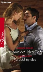 En cowboy i New York / Forbudt nytelse (ebok)