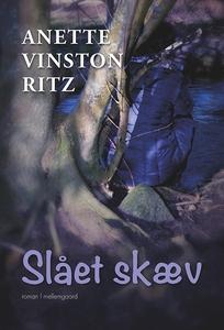 Slået skæv (e-bog) af Anette Vinston