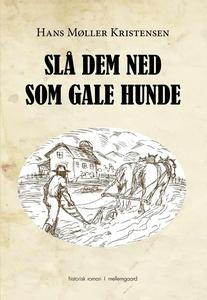 SLÅ DEM NED SOM GALE HUNDE (e-bog) af