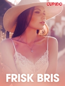 Frisk bris – erotiske noveller