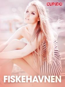 Fiskehavnen – erotiske noveller (ebok) av Cup