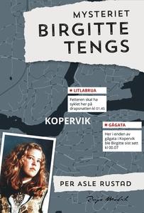 Mysteriet Birgitte Tengs (ebok) av Per Asle R