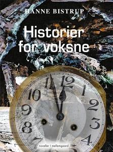 Historier for voksne (e-bog) af Hanne