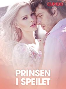 Prinsen i speilet – erotiske noveller (ebok)