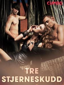 Tre stjerneskudd (ebok) av Cupido noveller
