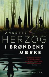 I brøndens mørke (e-bog) af Annette H