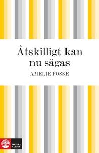 Åtskilligt kan nu sägas (e-bok) av Amelie Posse
