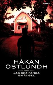 Jag ska fånga en ängel (e-bok) av Håkan Östlund
