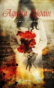 Ett ljus i mörkret (e-bok) av Agneta Sjödin