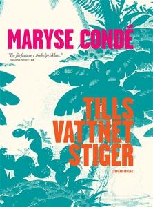 Tills vattnet stiger (e-bok) av Maryse Condé