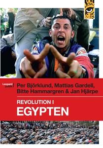 Revolution i Egypten (e-bok) av Mattias Gardell