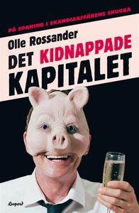 Det kidnappade kapitalet: på spaning i Skandiaa