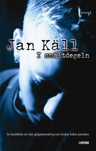 I smältdegeln (e-bok) av Jan Käll