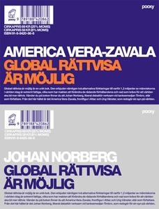Global rättvisa är möjlig (e-bok) av America Ve