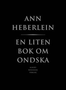 En liten bok om ondska (e-bok) av Ann Heberlein