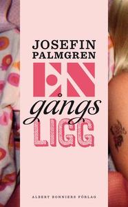Engångsligg (e-bok) av Josefin Palmgren