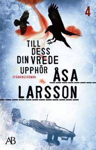 Till dess din vrede upphör (e-bok) av Åsa Larss