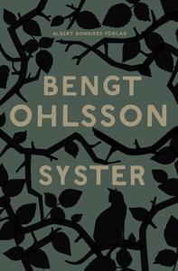 Syster (e-bok) av Bengt Ohlsson
