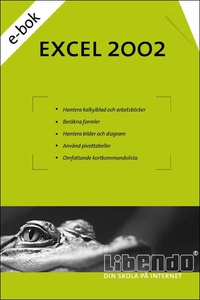 Excel 2002 (e-bok) av  Libendo Education