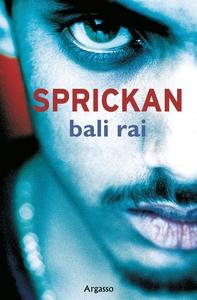 Sprickan (e-bok) av Bali Rai