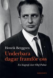 Underbara dagar framför oss (e-bok) av Henrik B