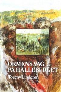 Ormens väg på hälleberget (e-bok) av Torgny Lin