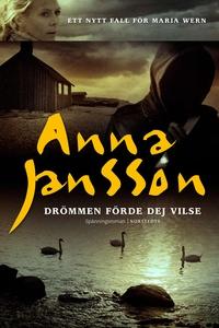 Drömmen förde dej vilse (e-bok) av Anna Jansson