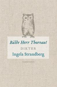 Bäste Herr Thoreau (e-bok) av Ingela Strandberg