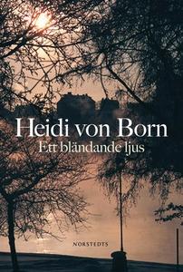 Ett bländande ljus (e-bok) av Heidi von Born