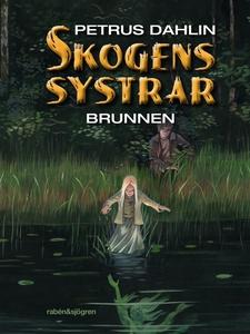 Brunnen (e-bok) av Petrus Dahlin