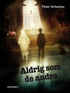 Aldrig som de andra (e-bok) av Peter Arrhenius