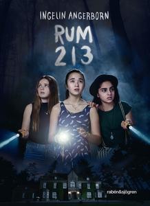 Rum 213 (e-bok) av Ingelin Angerborn