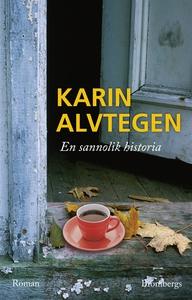 En sannolik historia (e-bok) av Karin Alvtegen