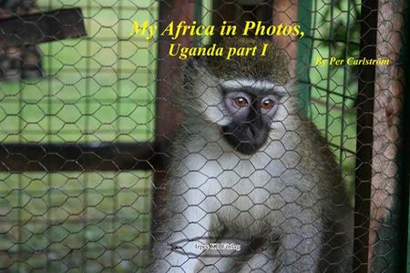 My Africa in Photos, Uganda part I (e-bok) av P