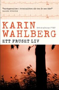 Ett fruset liv (e-bok) av Karin Wahlberg