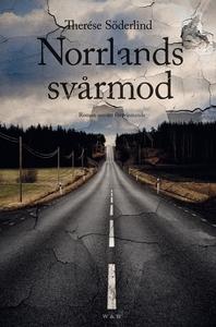Norrlands svårmod : Roman om ett försvinnande (