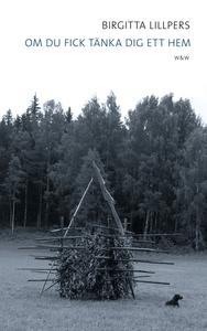 Om du fick tänka dig ett hem (e-bok) av Birgitt