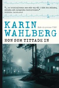Hon som tittade in (e-bok) av Karin Wahlberg