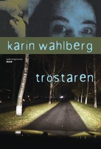 Tröstaren (e-bok) av Karin Wahlberg