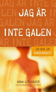 Jag är inte galen : En bok om panikångest (e-bo