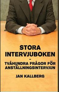 Stora intervjuboken (e-bok) av Jan Kallberg