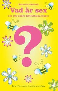 Vad är sex och 100 andra jätteviktiga frågor (e