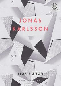 Spår i snön (e-bok) av Jonas Karlsson