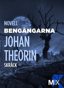 Bengångarna (e-bok) av Johan Theorin