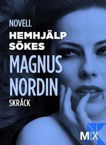 Hemhjälp sökes (e-bok) av Magnus Nordin