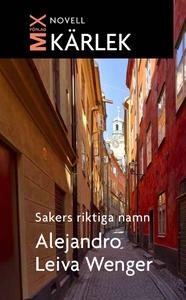 Sakers riktiga namn (e-bok) av Alejandro Leiva,