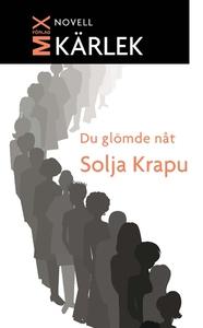 Du glömde nåt (e-bok) av Solja Krapu