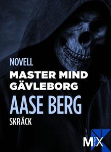 Master Mind Gävleborg (e-bok) av Aase Berg