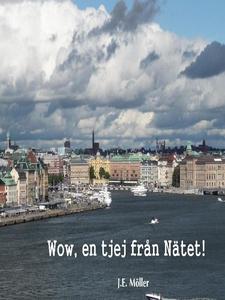 Wow, en tjej från Nätet! (e-bok) av J.E. Möller