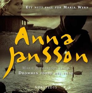 Drömmen förde dej vilse (ljudbok) av Anna Janss